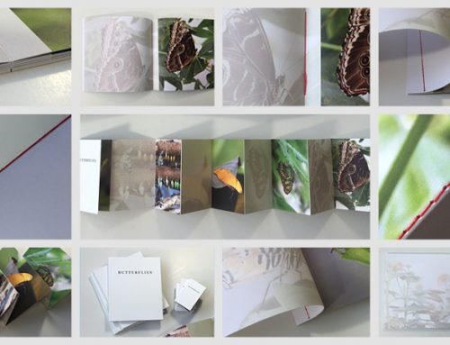 Photobooks in 2017: quality, prices and data handling – what's set to improve, where can further potential be exploited?