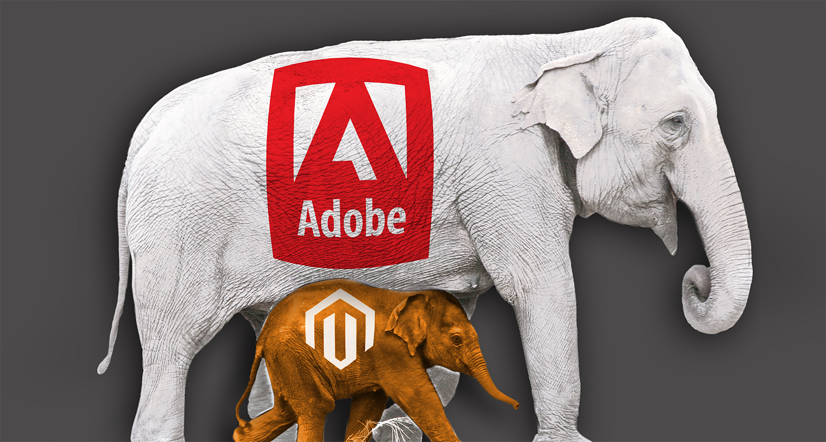 Takeover: Adobe acquires Magento – what does that mean for the online print industry?